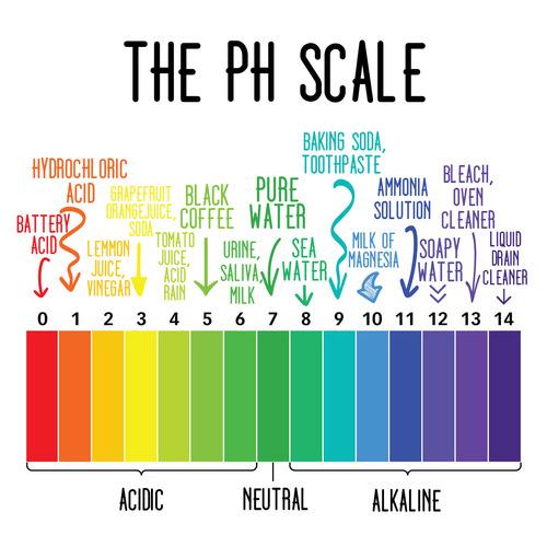 """Kết quả hình ảnh cho độ pH trong mỹ phẩm"""""""