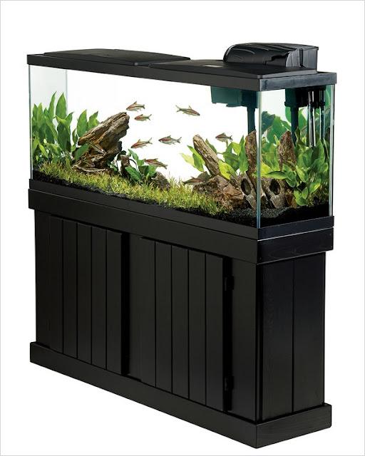 aquarium fish tank sales