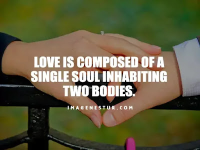 Love Captions-Love is composed of a single soul inhabiting two bodies.