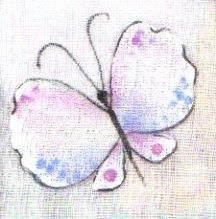 pintura em tecido borboleta