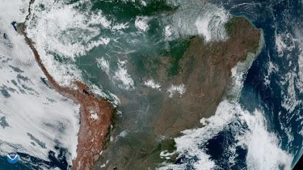 Μελέτη-σοκ: Τα 2/3 των τροπικών δασών έχουν καταστραφεί ή υποβαθμιστεί