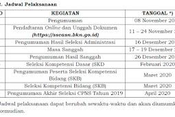 Formasi CPNS 2019 Lampung dan Kementerian seluruh Indonesia