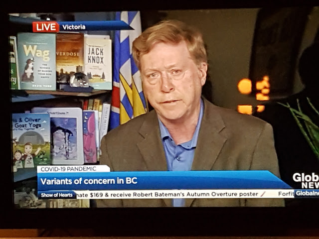 Photo of the Global BC screen showing Keith Baldrey reporting, with Wag prominently displayed on the bookshelf behind him