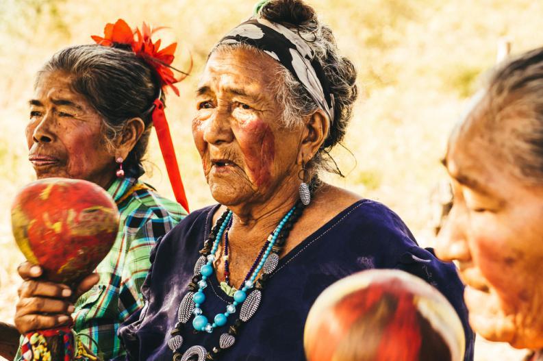 La Diferencia Entre Indio Indigena Aborigen Y Pueblo Origario