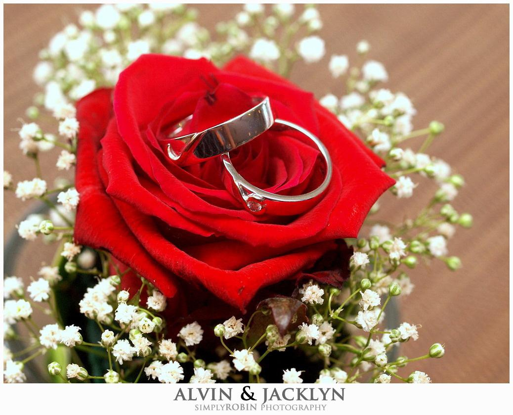 Alvin & Jacklyn: Engagement Shoot ~ ROBIN WONG