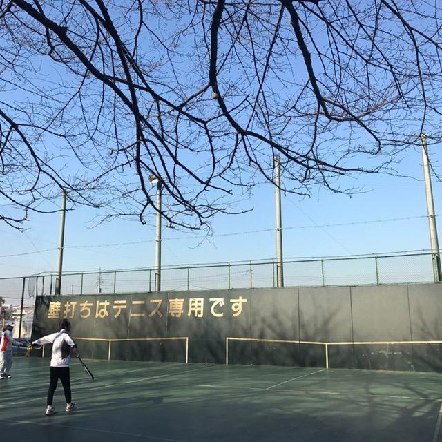コート テニス 城山 公園