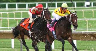 Yarışan At İkramiye Dağıtıyor! Sinan Sertaç'tan Diyarbakır'da 38 TL'ye 10.000 TL!