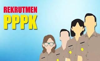 sscasn.go.id Belum Bisa Diakses, 5 Info Baru Pendaftaran PPPK 2019
