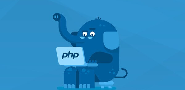 php pet coding