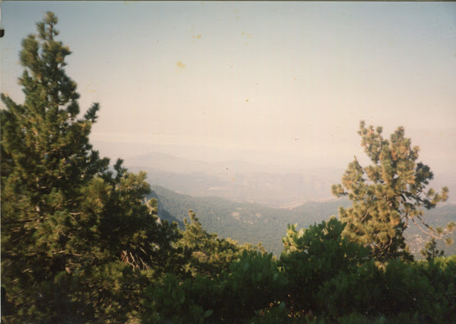 view from Fuller Ridge