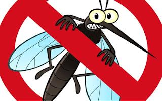 Consejos para una correcta aplicación del repelente de insectos