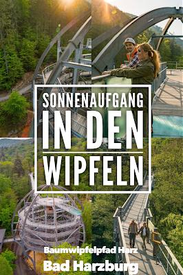 Sonnenaufgang am Baumwipfelpfad-Harz | Wandern in Bad Harzburg Sonnenaufgangswanderung Bad –Harzburg 21