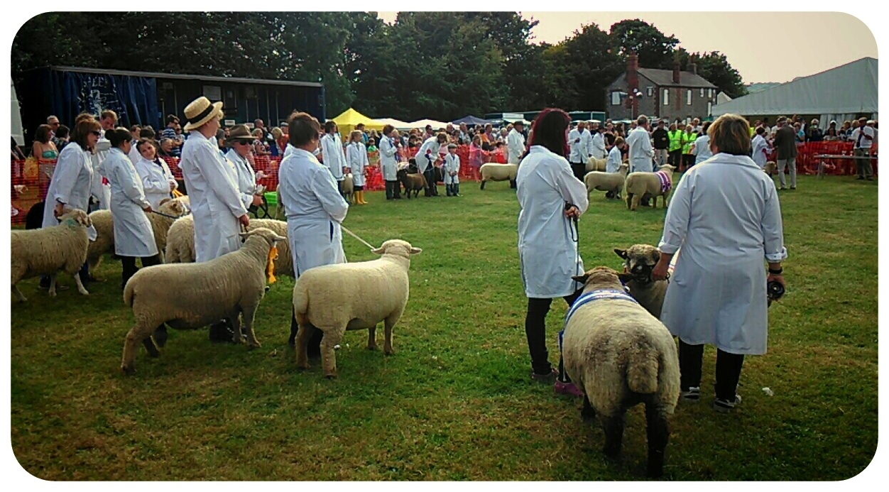 End of show, Findon Sheep Fair