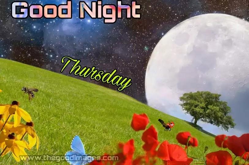 Good Night Thursday
