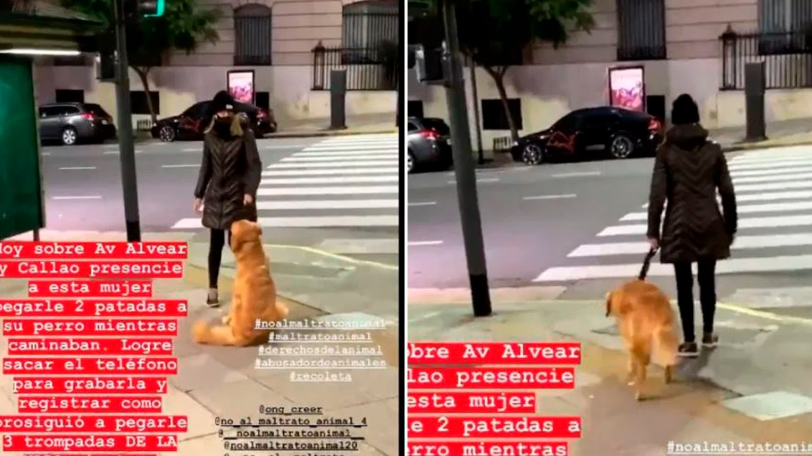 Video: Exhiben a mujer que golpea a su perro en la calle; la justicia ya la busca