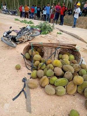 Tak Tega Lihat Penjual Durian Dilindas Tronton PT TMA, Begini Kondisinya
