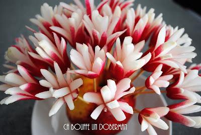 http://cabouffeundoberman.blogspot.fr/2017/05/bouquet-de-radis-parce-que-les-fleurs.html