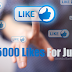 Buy $1 Facebook Likes (5000 Page Likes)