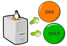 DHCP Server और DNS Server में क्या Difference है?