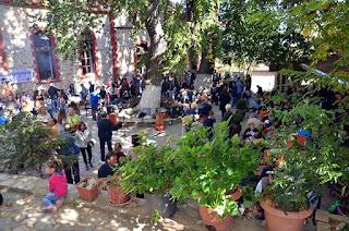 Εκατοντάδες παιδιών και ενήλικων έδωσαν και φέτος το παρόν την Κυριακή 15/10/2017 στην 8η Καστανογιορτή στον Παλαιό Παντελεήμονα Πιερίας.