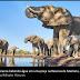 Elefantes-Africanos chegam a perder mais de 500 litros de água por dia