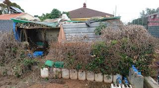 Den förre ägaren hade satt sin egen prägel på trädgården och hade innovativa lösningar,