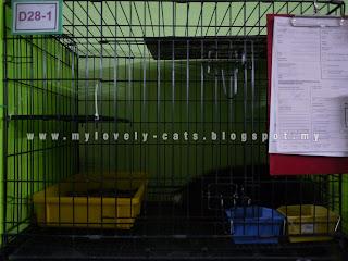 boarding raya aidilfitri 2019
