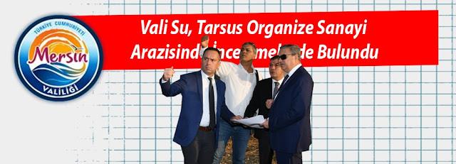 Vali Su, Tarsus Organize Sanayi Arazisinde İncelemelerde Bulundu