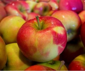 5 buah-buahan ini bisa membantu melawan penyakit kanker