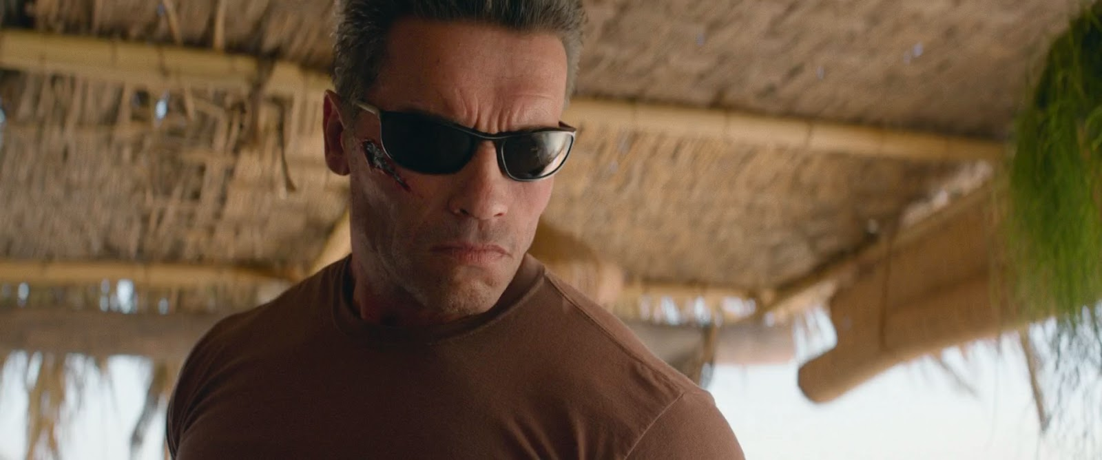 Terminator+Destino+oculto+%282019%29+HD+1080p+WEB-DL+Latino+-+Ingles+-+Descargatepelis.com.mkv_snapshot_00.03.47_%5B2020.01.14_01.10.27%5D.jpg (1600×668)