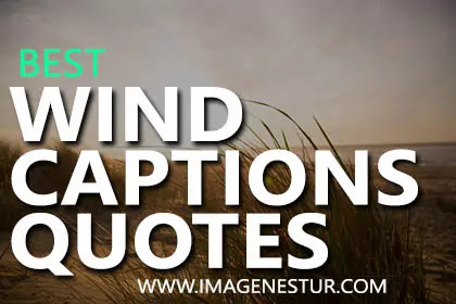 Wind Captions for Instagram Selfies and Pictures, Strong Wind Quotes, and Wind Puns & Sayings for Windy Photos for Girls and Boys Bio.