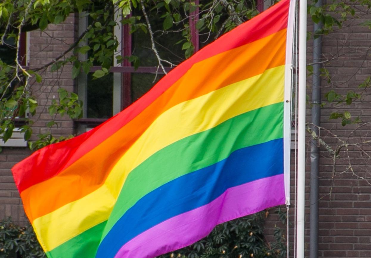 Le mariage gay et l'avortement enfin adoptés en Irlande du Nord
