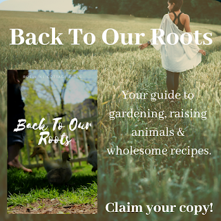 Back To Our Roots Book, Guide to Gardening, Raising Animals and Wholesome Recipes.  by Rosevine Cottage Girls