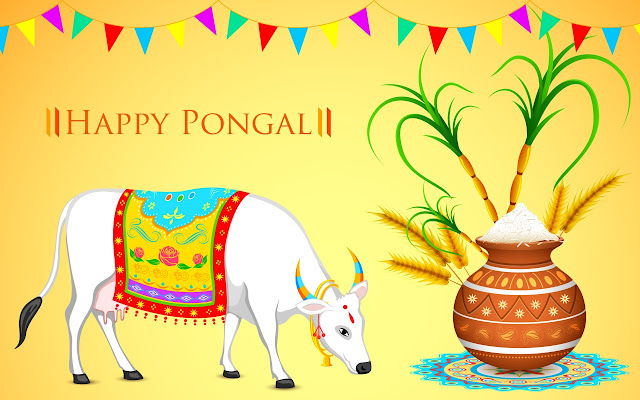 Pongal Festival Wishes, Greetings, Messages 2017