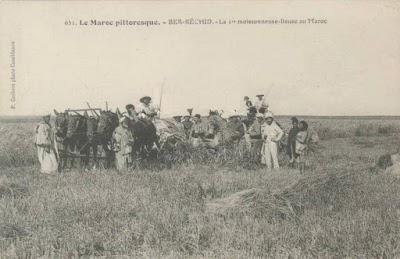 تاريخ الزراعات بأولاد حريز- برشيد