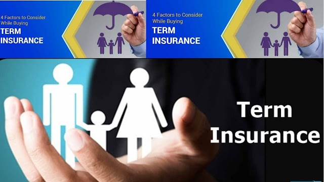 What is Term life insurance or pure life insurance?