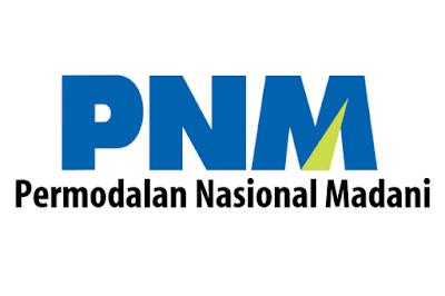 Lowongan Kerja IT Database Administrator PT Pemodalan Nasional Madani BUMN