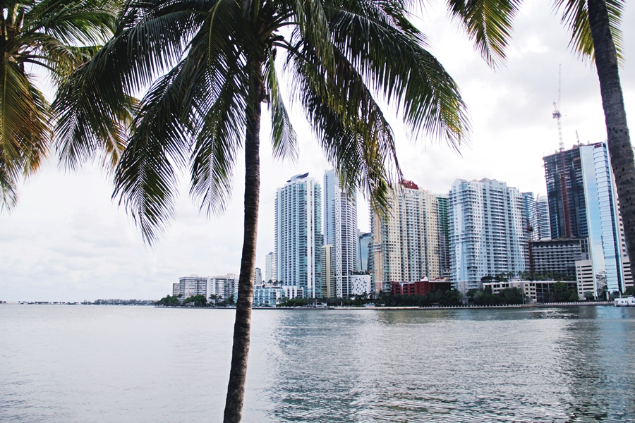 miami beach city