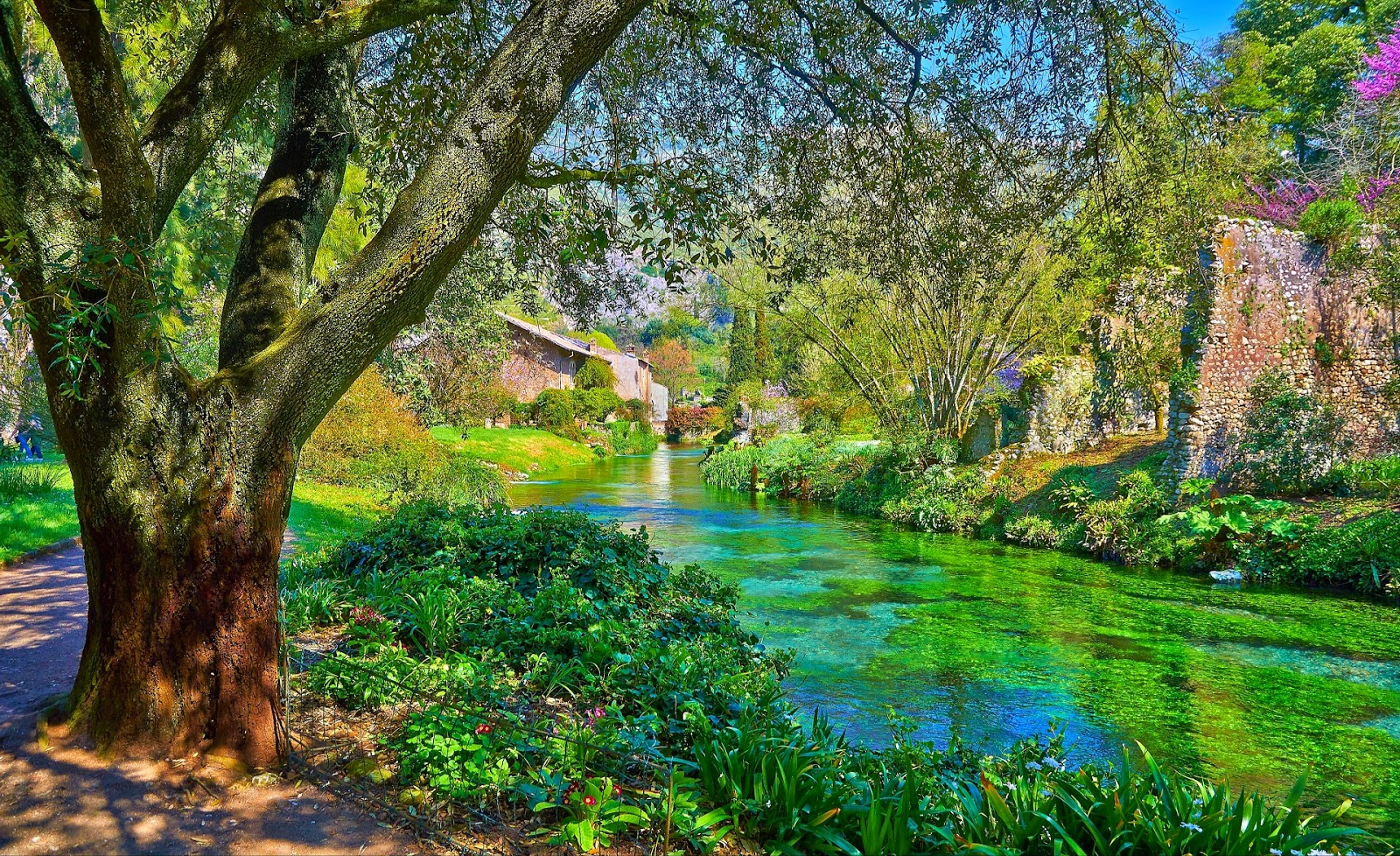 Garden on Ninfa Italy