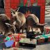 Πώς τα ζώα γιόρτασαν τα Χριστούγεννα (μέρος α')