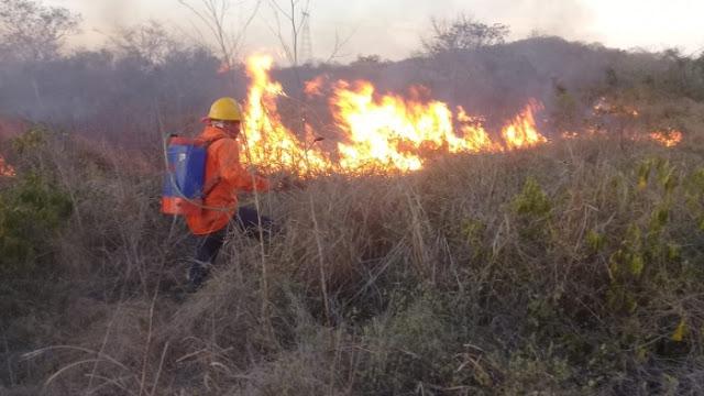 Llama Procivy a la sociedad yucateca contribuir a la prevención y control de incendios