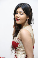 Rachana Smit in Red Deep neck Sleeveless Gown at Idem Deyyam music launch ~ Celebrities Exclusive Galleries 096.JPG