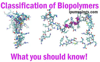 Classification of Biopolymers - What you should know!  (#biochemistry)(#biotechnology)(#ipumusings)(#biopolymers)