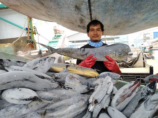 Pengurusan Surat Ijin Penangkapan Ikan Tidak Dikenakan Biaya