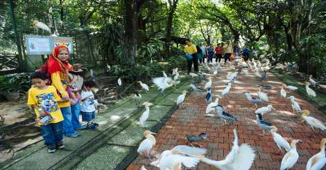 Bermain di Kuala Lumpur Bird Park