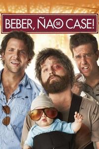 Se Beber, Não Case! (2009) Dublado 1080p