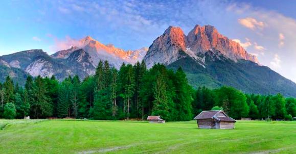 Greenery In Bavarian Alps