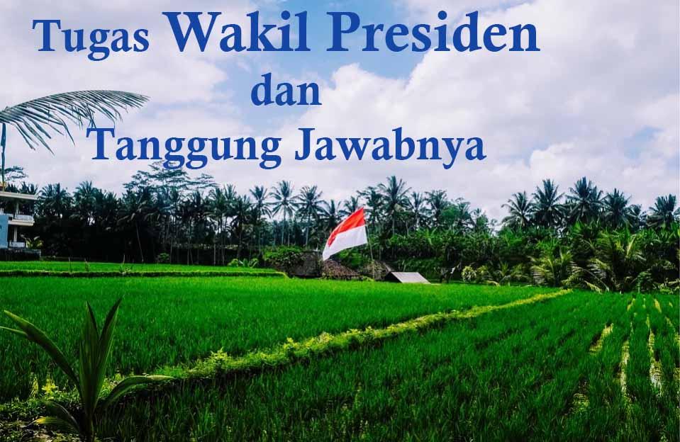 Tugas Wakil Presiden Beserta Peran, Fungsi dan Wewenangnya