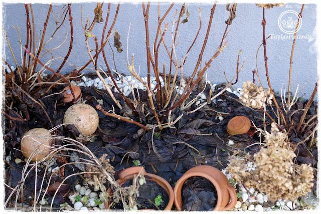 Gartenblog Topfgartenwelt erste Gartenarbeiten im Frühjahr Checkliste: was ist im Frühling im Garten zu tun