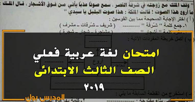 امتحان لغة عربية الصف الثالث الابتدائي 2019 فعلي جميع المحافظات